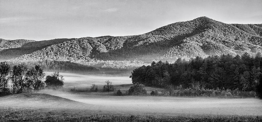 A Foggy Cades Cove Morning Photograph