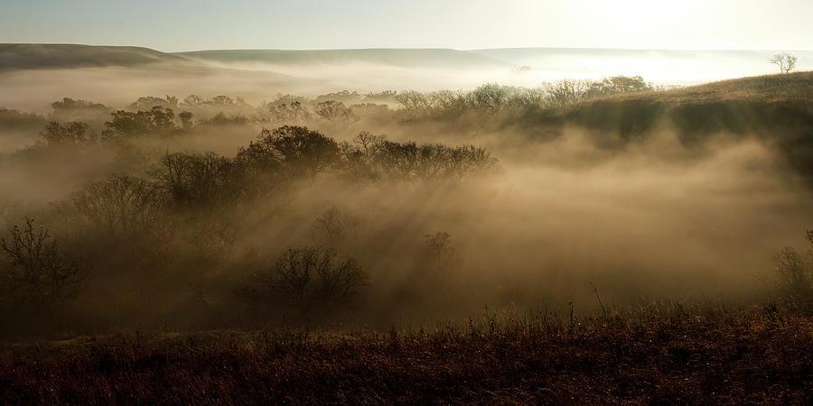 A Foggy Morning by Scott Bean