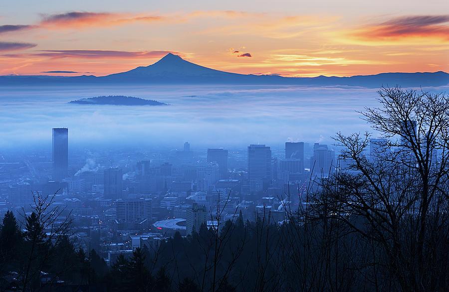 A Foggy Sunrise Photograph