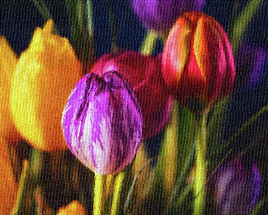A Garden Of Color Mixed Media