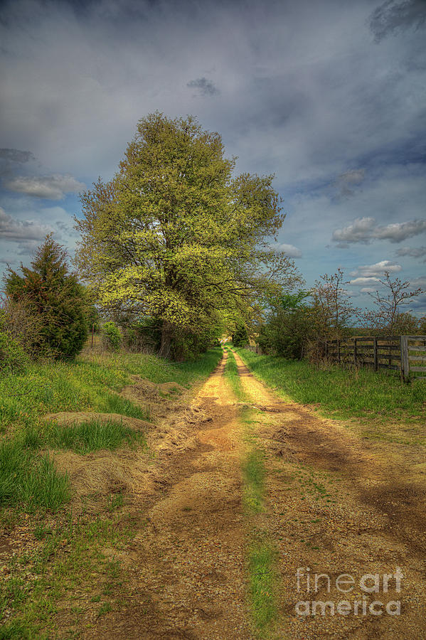 Travel Photograph - A Gravel Road with Imagination.  by Larry Braun