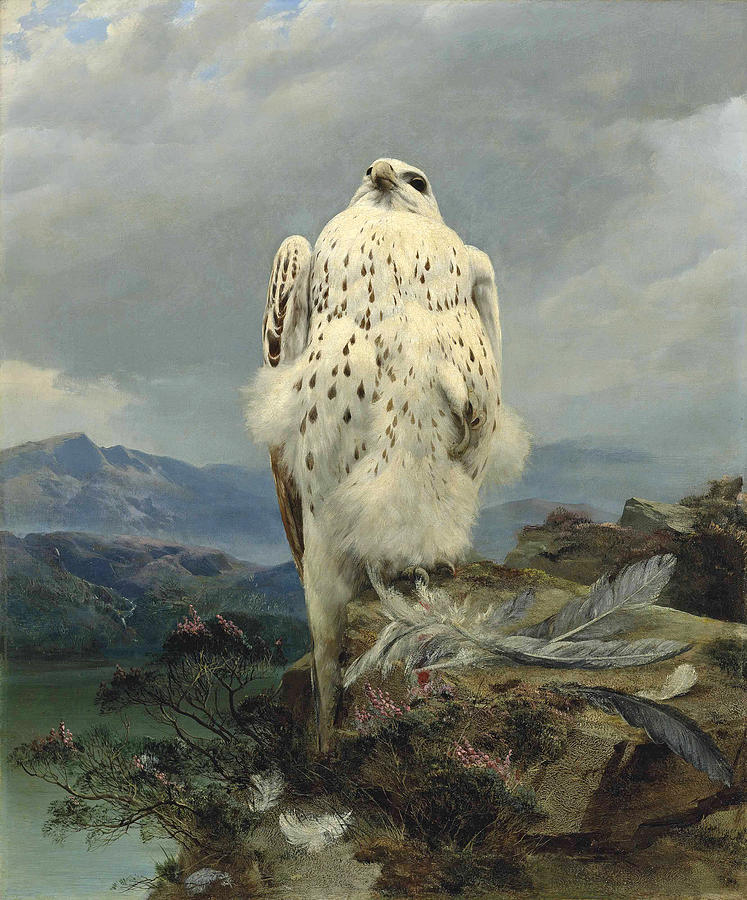 A gyrfalcon in an extensive mountainous landscape by Attributed to Joseph Wolf