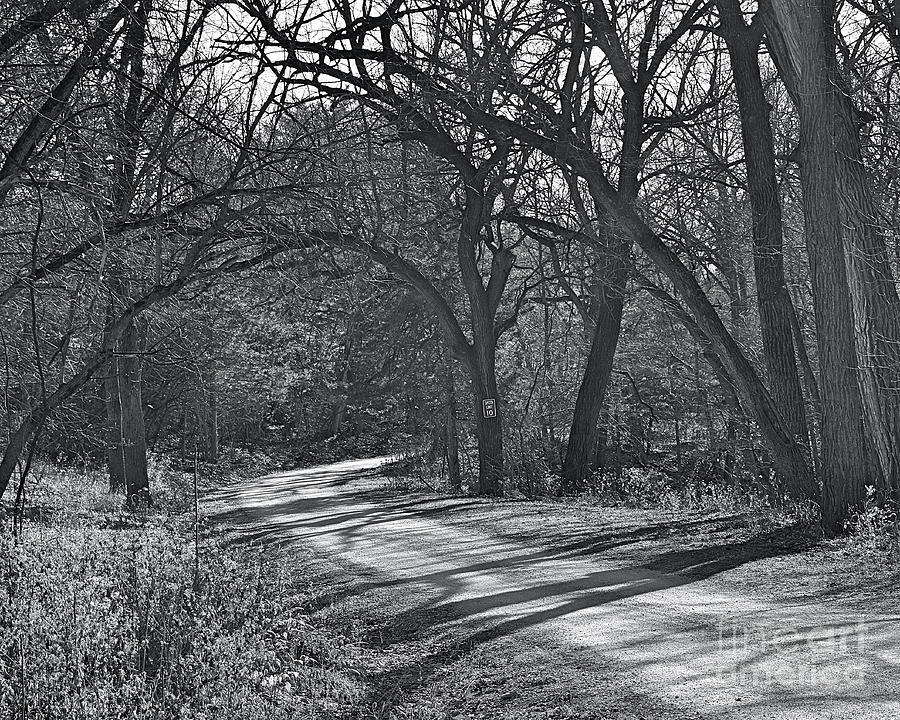 A Long Trail A-winding In Bw Photograph