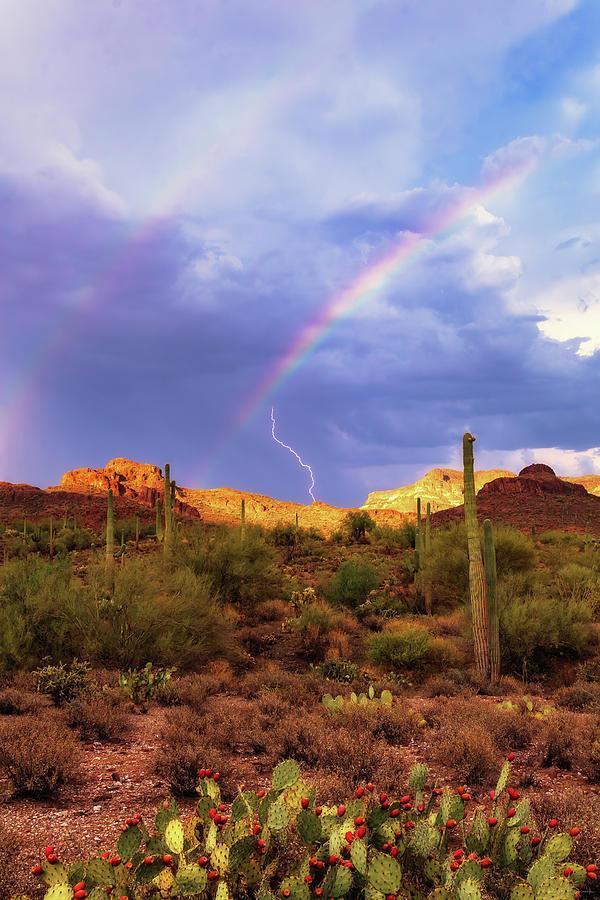 Adventure Photograph - A Miracle of Timing by Rick Furmanek
