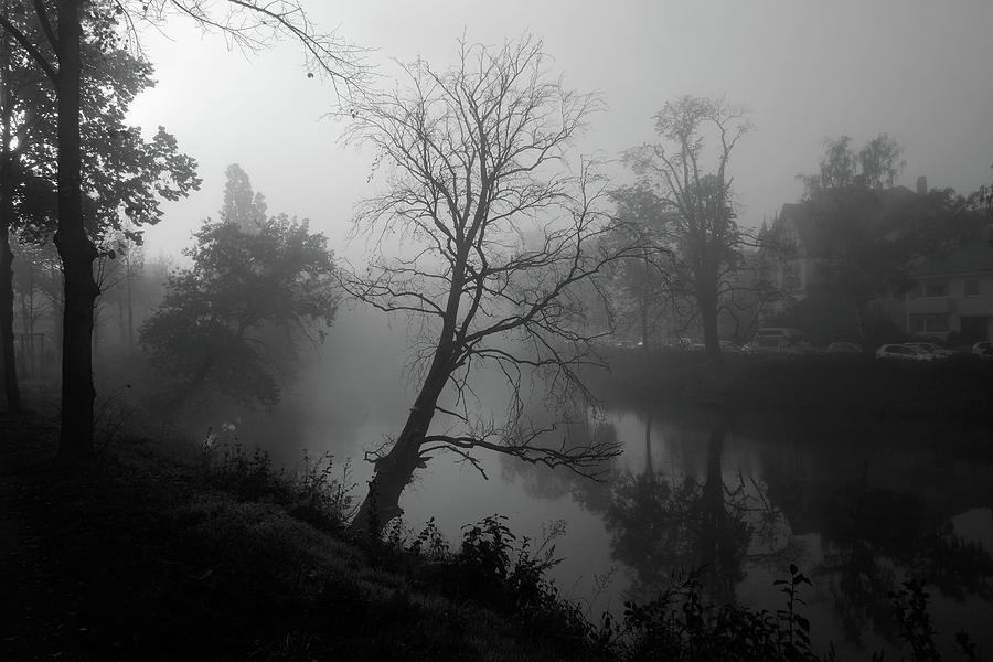 A Misty Morning Photograph