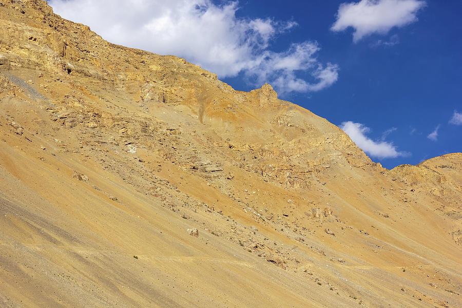 Arid Photograph - A mountain and blue sky in Spiti by Balaji Srinivasan