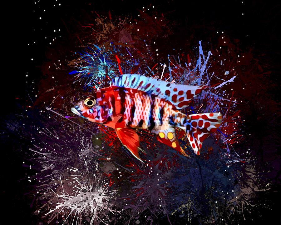 Yellow Digital Art - A Red Male OB Peacock Cichlid by Scott Wallace Digital Designs