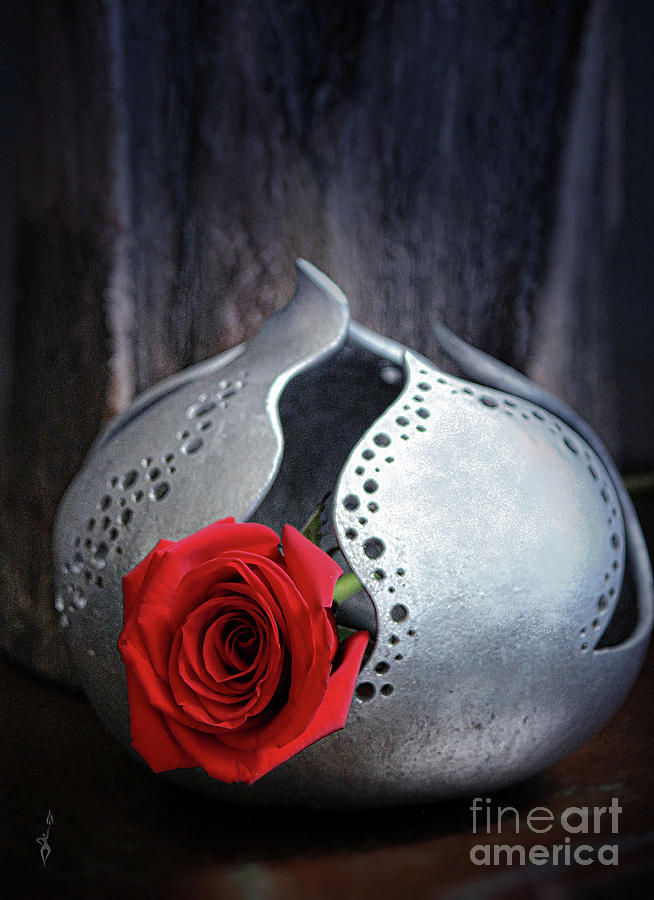 A Rose By Any Other Name Photograph