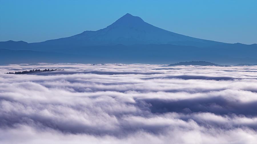 A Sea Of Fog Photograph