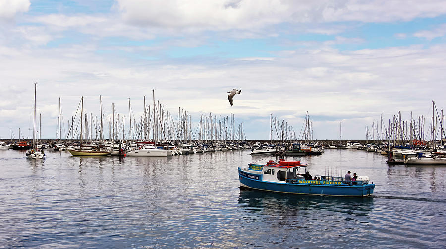A Shot Of Brixham Harbor, Devon, England, Gb, Uk Photograph