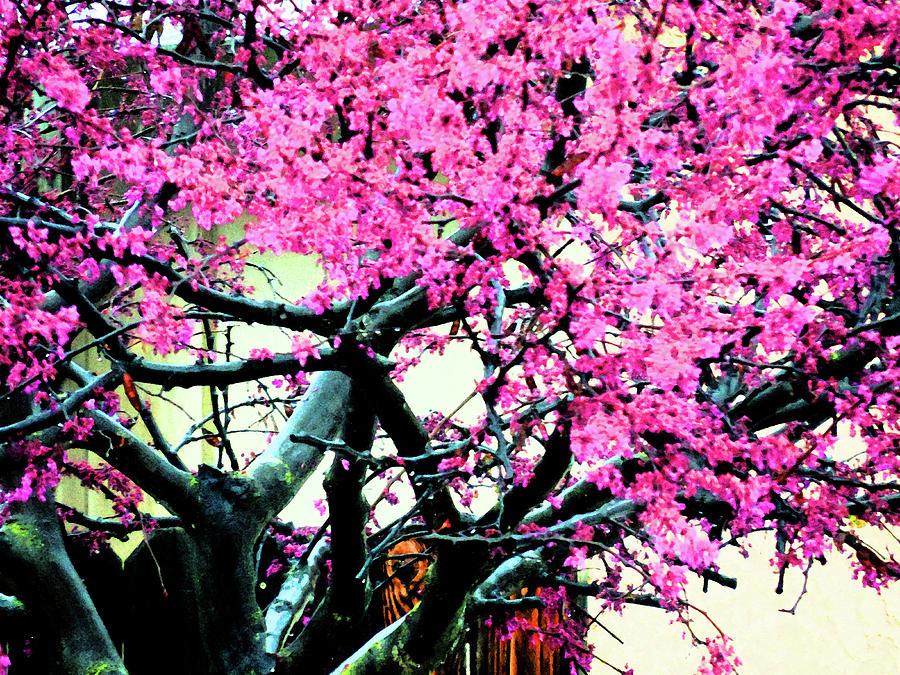 A Very Pink Tree Digital Art