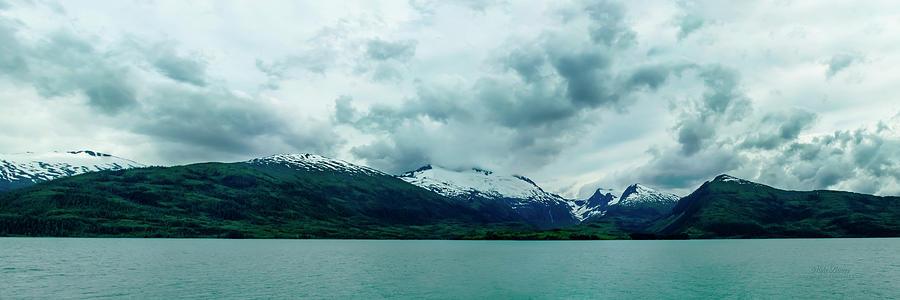 Alaska Photograph - A Visit To The Gulf Of Alaska by Mike Braun