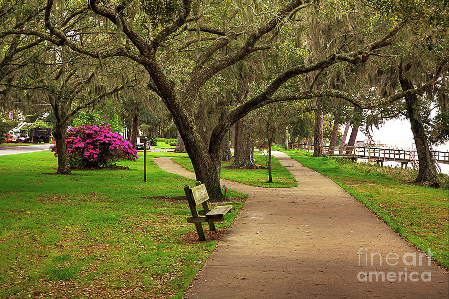 Travel Photograph - A Walk In The Park  by Larry Braun