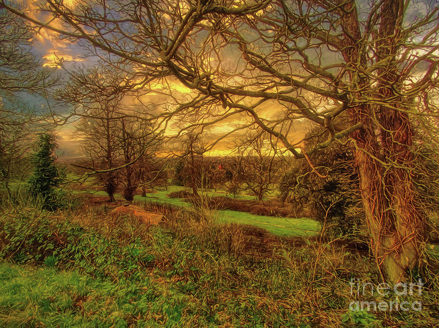 Trees Photograph - A Winter Landscape by Leigh Kemp