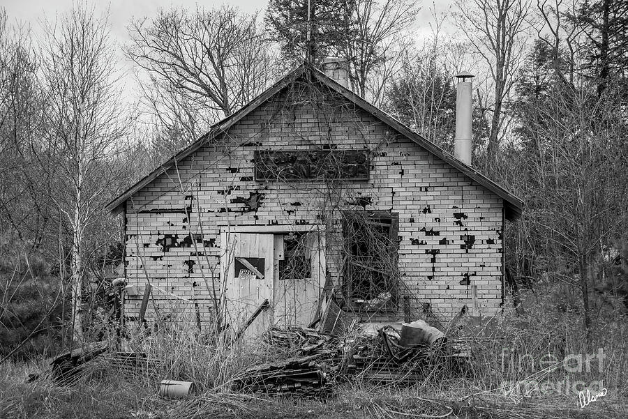 Abandond Shed Photograph