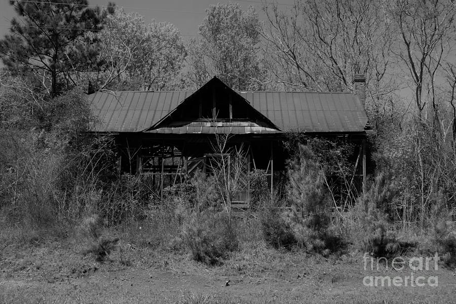 Abandoned America #9 - This Old House Photograph