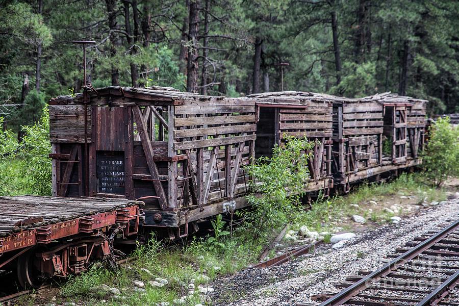 Abandoned Boxcars Photograph