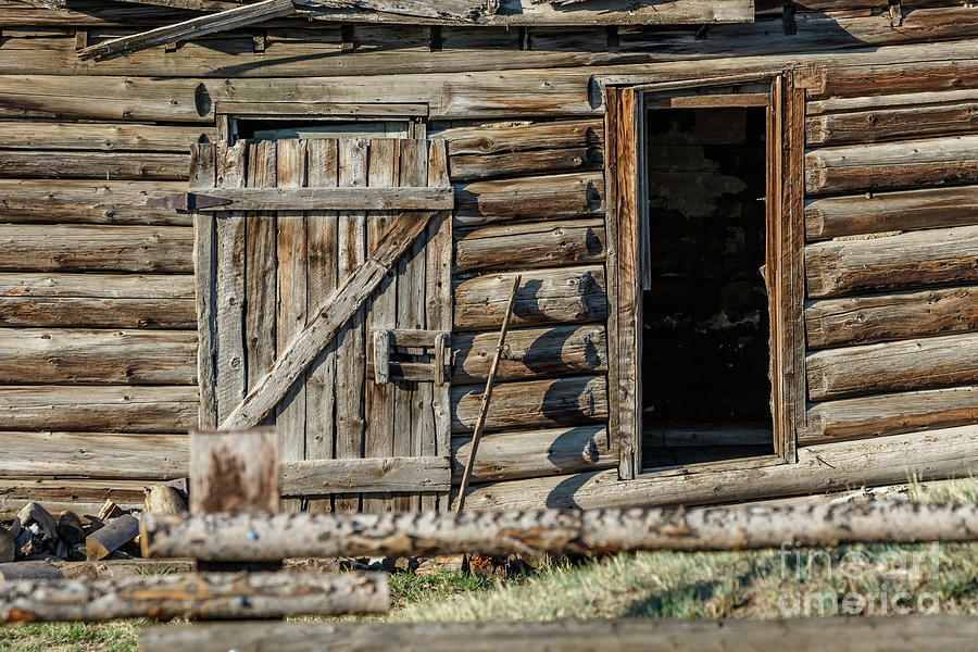 Abandoned Cabin Near Crested Butte, Colorado, Usa Photograph