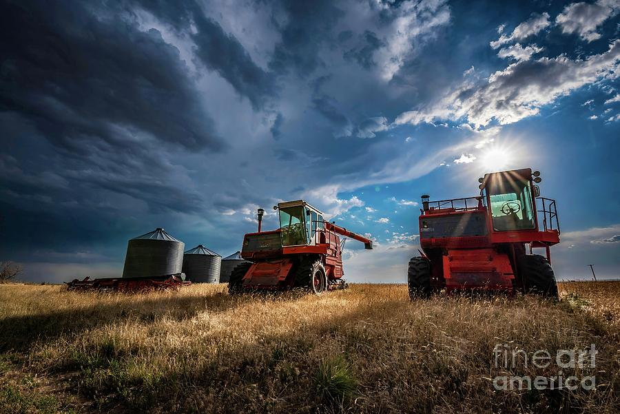 Abandoned Combines Photograph