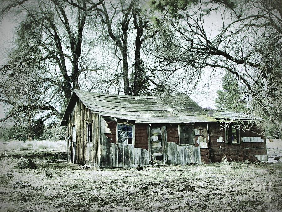 Abandoned Homestead 2 Photograph