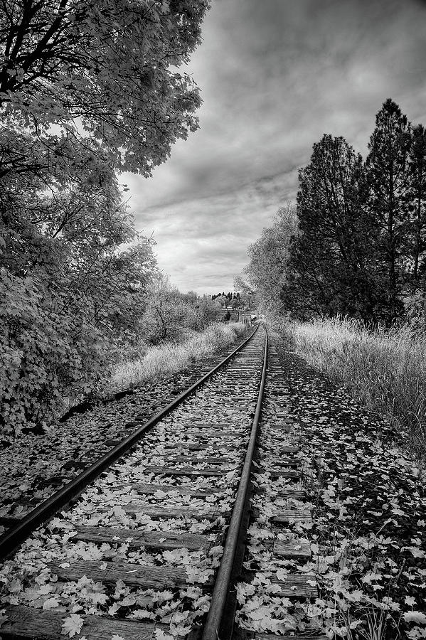 Abandoned Tracks by David Patterson