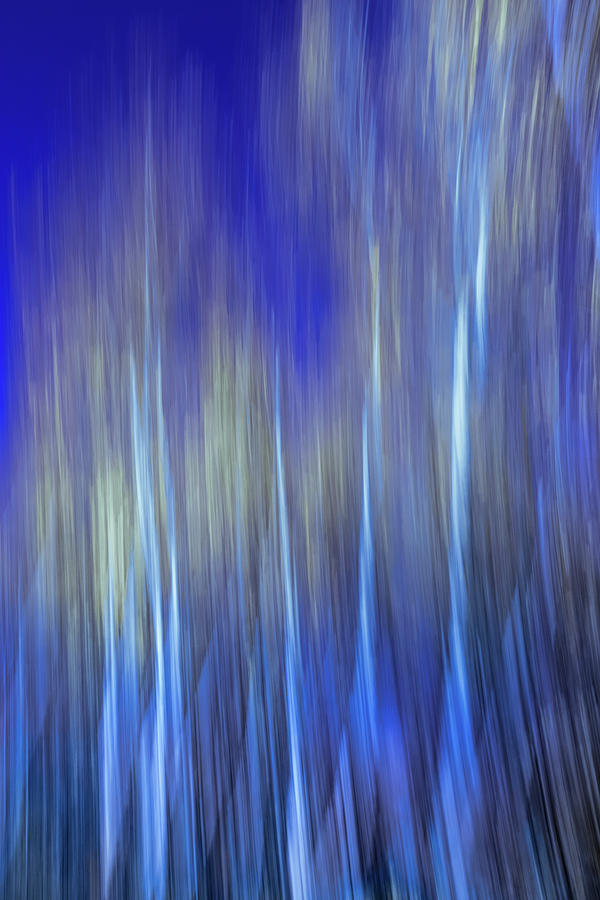 Abstract landscape with trees by Cristina Stefan