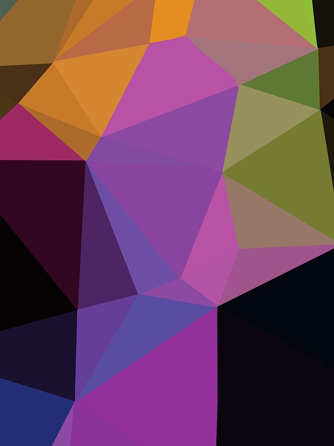 Geometry Digital Art - Abstract Polygon Illustration Design 109 by Ahmad Nusyirwan