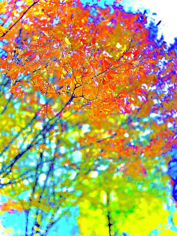 Abstraction of Fall by Michael Oceanofwisdom Bidwell