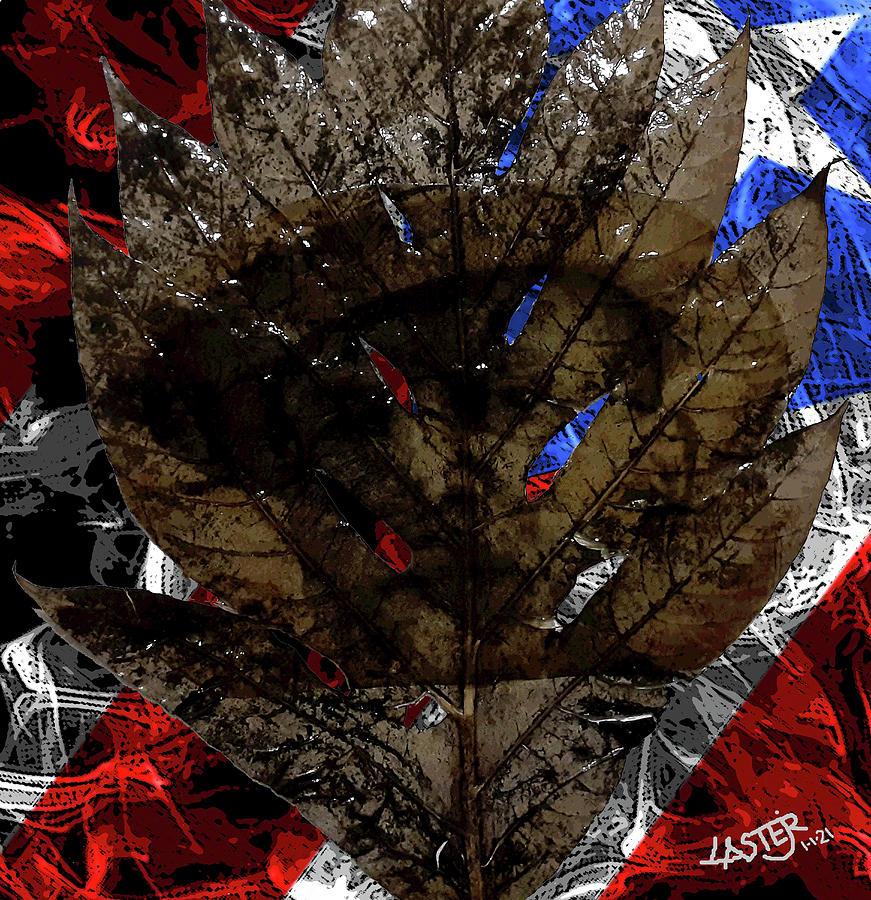 Adal Mi Pana Digital Art by Carlos Laster