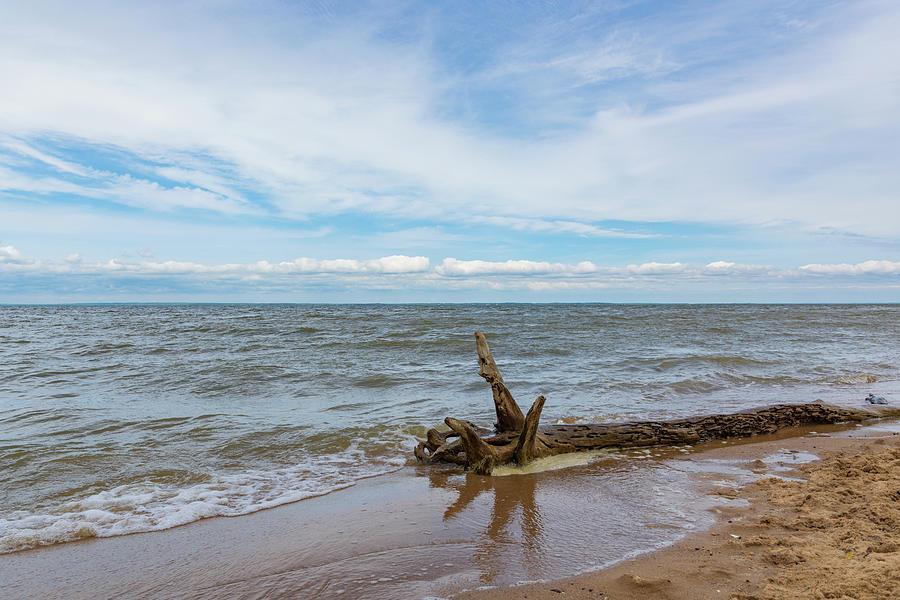 Adrift And Ashore Photograph