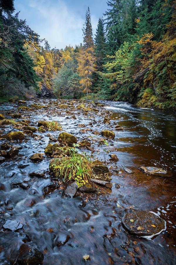 Affric Autumn Photograph