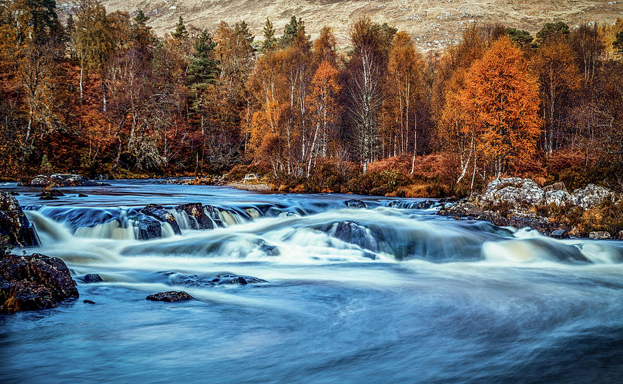 Affric Gold Photograph