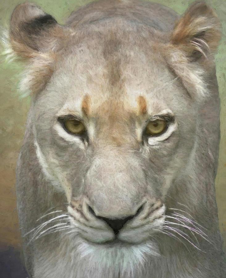 Lion Photograph - African Lioness Up Close Portrait by Rebecca Herranen