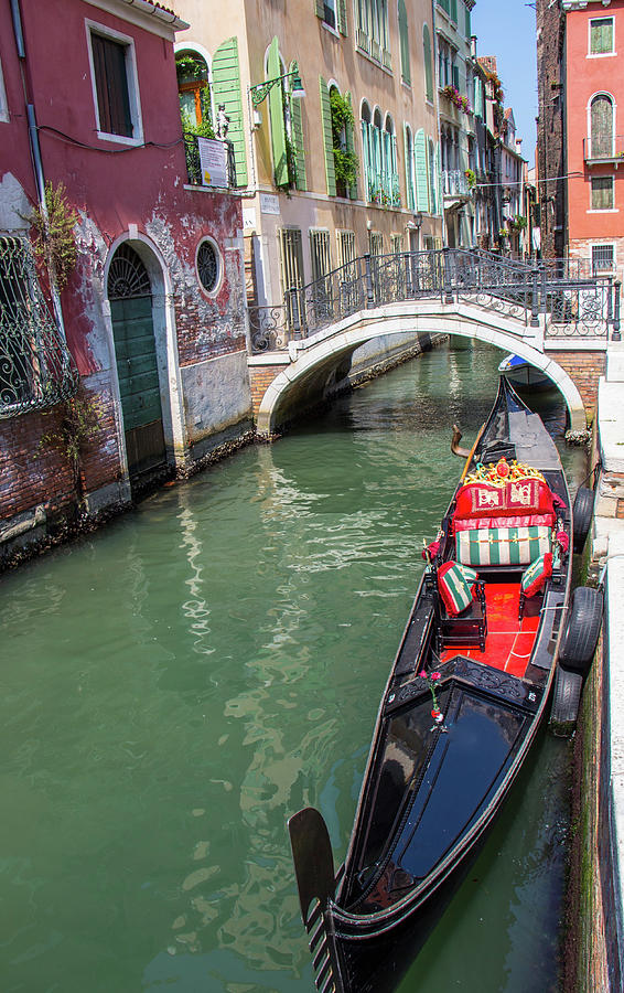 Afternoon in Venice by Venetia Featherstone-Witty