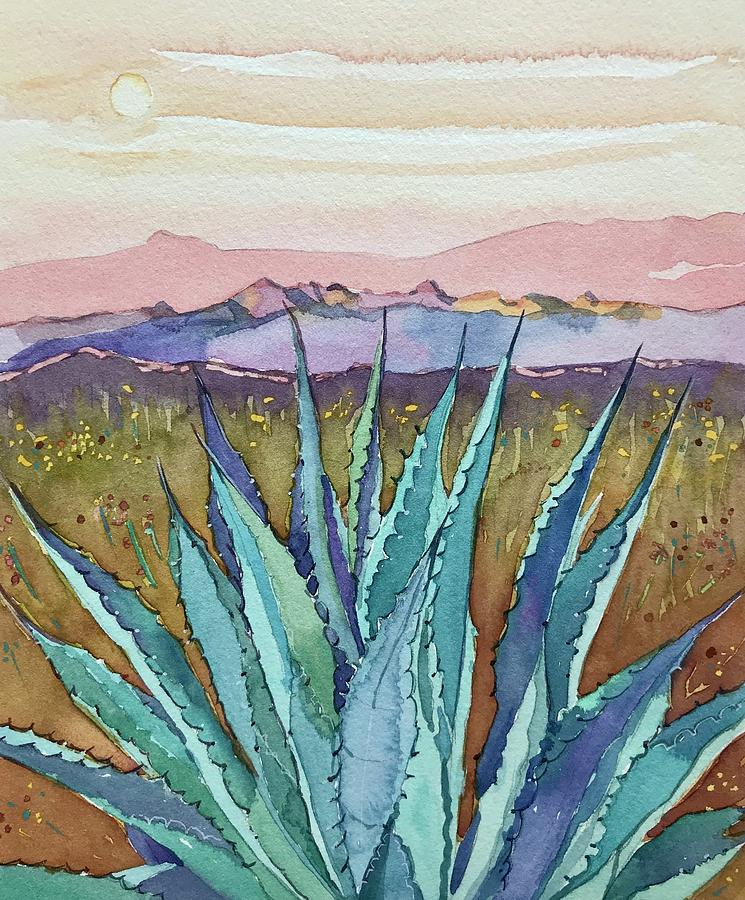 Agave Sunset Photograph