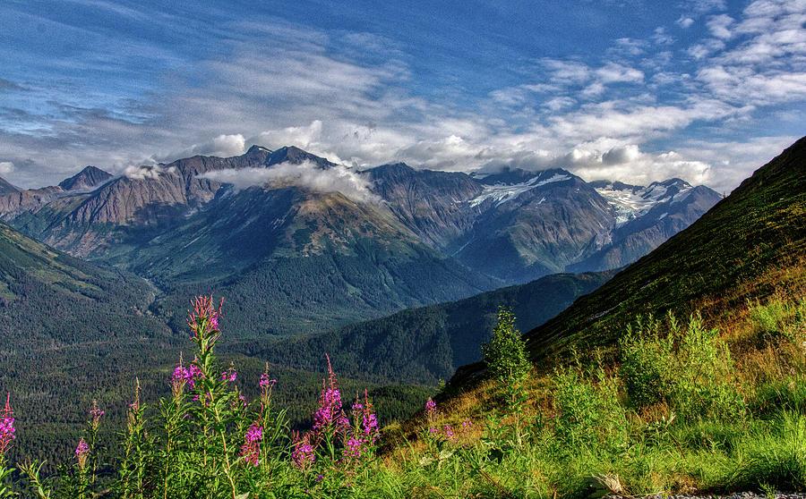 Alaska Photograph - Alaskan Mountain Meadow by Paul Malen