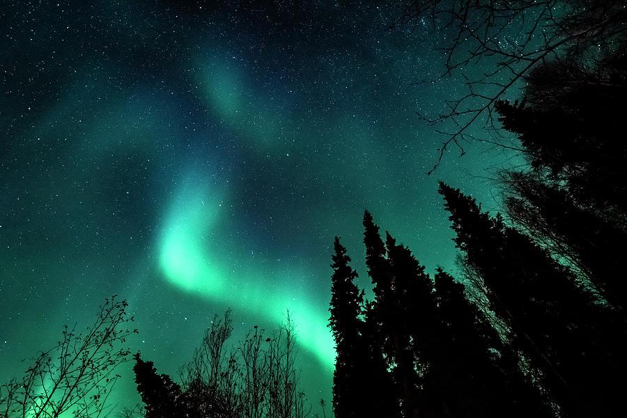 Alaskan Night Sky Photograph