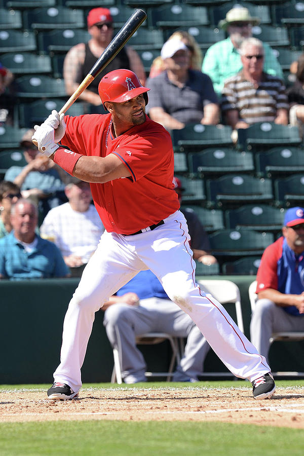 Albert Pujols Photograph by Norm Hall