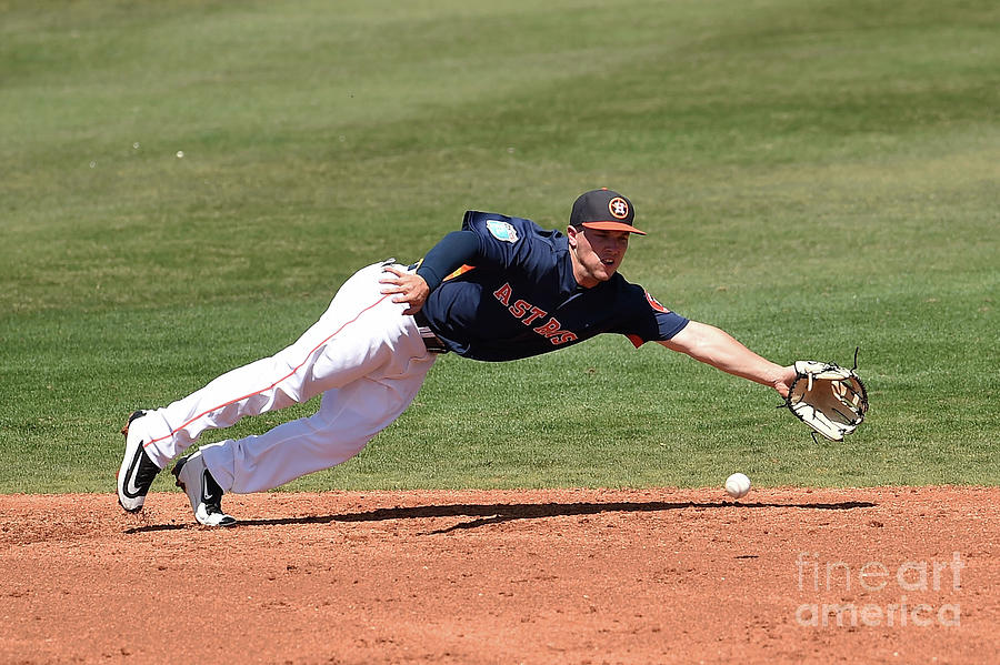 Alex Bregman Photograph by Stacy Revere