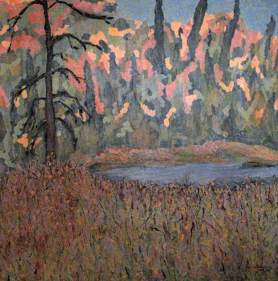Northern Ontario Painting - Algonquin Autumn by Ian  MacDonald