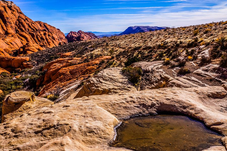 Alien Scape Photograph by Rodney Lee Williams