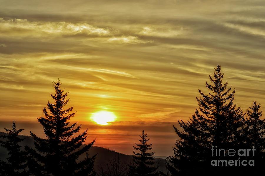 Allegheny Mountain Morning by Thomas R Fletcher