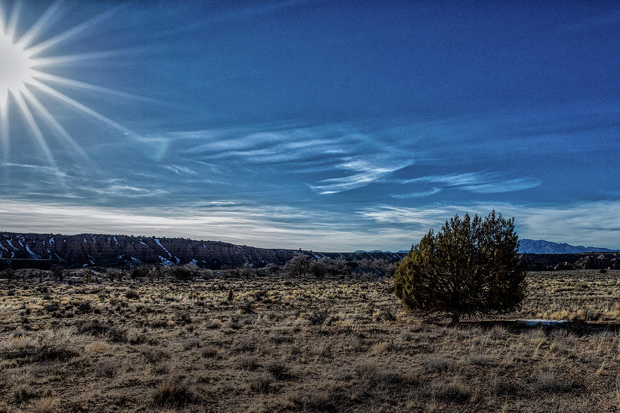 Snow Canyon State Park Photograph - Alone on the Pra by Paul Malen