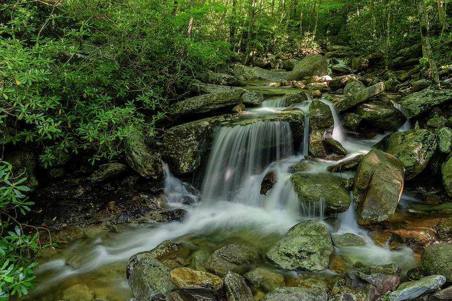 Blue Ridge Mountains Photograph - Along the Creek by Melissa Southern