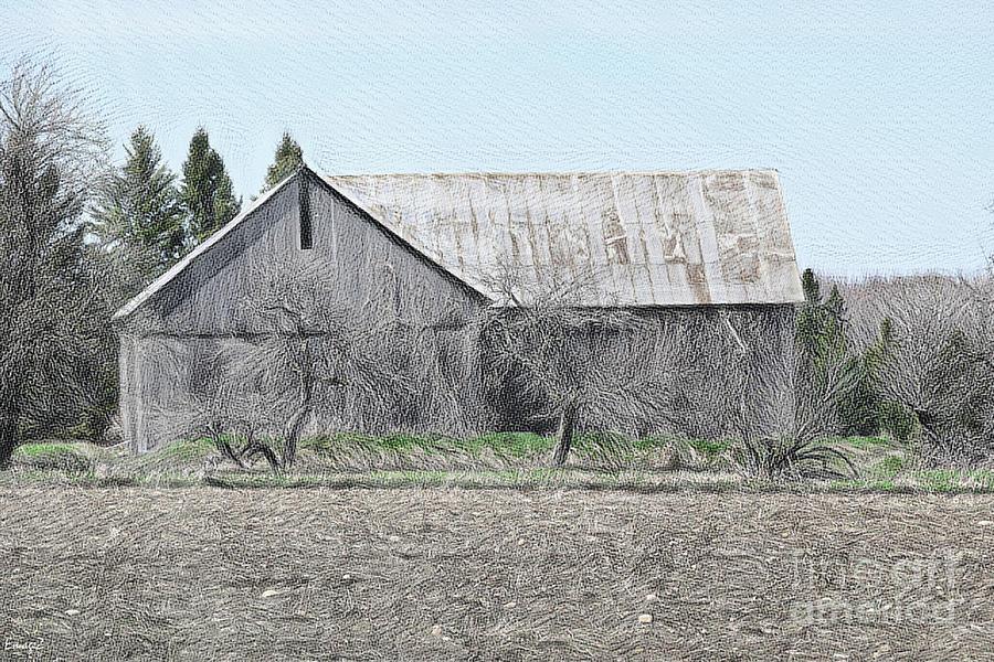 Alpena County Barn H Sketch 2 Digital Art