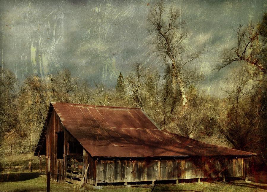 Amador Barn by Steph Gabler