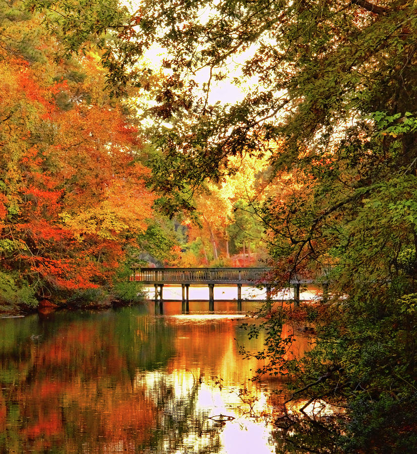 Amazing Autumn Tapestry Photograph