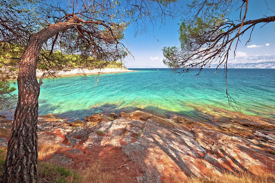 Amazing Turquoise Stone Beach On Brac Island View Photograph