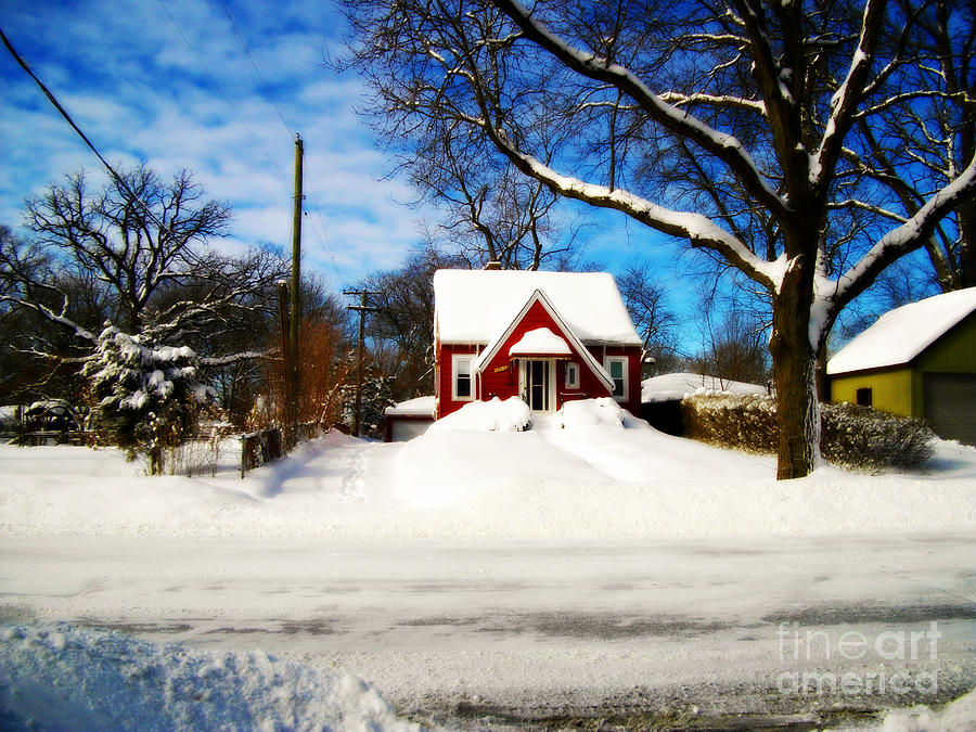 Documentary Photograph - America Heartland Winter Beauty by Frank J Casella