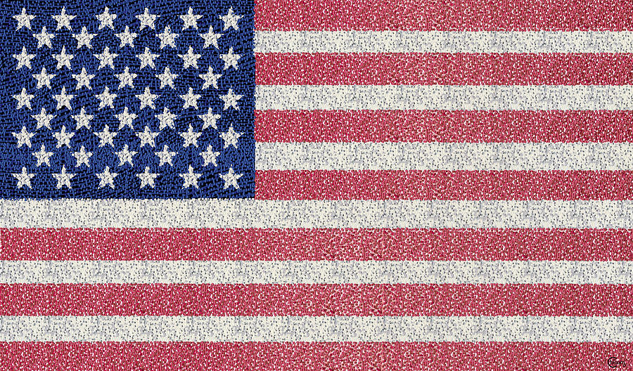 American Flag Drawing By Cecely Bloom